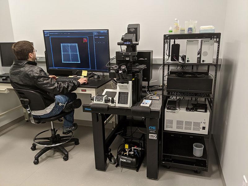 Vasselli no microscópio