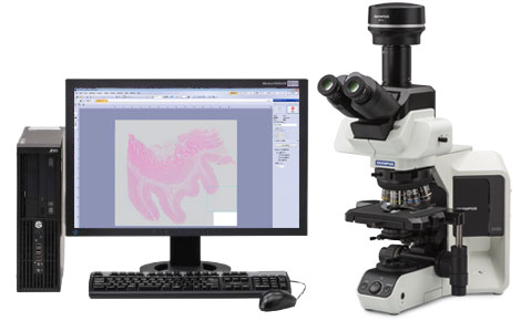Make Your Slide Digitalized with Manual Microscope ~Case Studies for manual whole slide imaging~