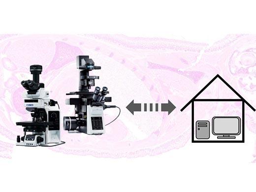Remote Microscopy