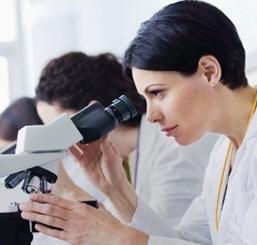Clinical Microscopy Solutions