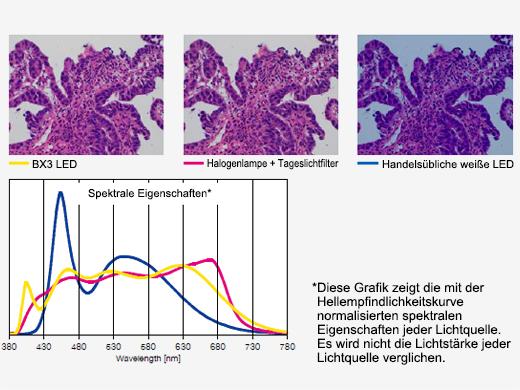 Für Pathologie und Zytologie optimierte helle LED-Beleuchtung
