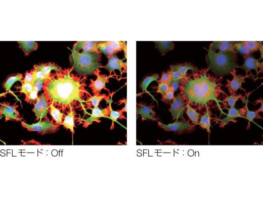 蛍光観察時に最適な露出時間を自動設定するSFL(Super  Fluorescence)機能