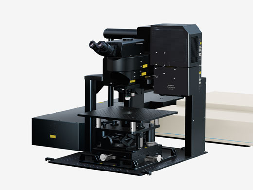 Gantry Microscope System — For in vivo Observation that Require Maximum Space
