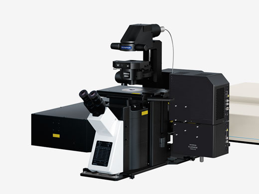 Inverted Microscope System — For Observing Tissue Cultures, 3D Cultures, and Cell Cultures (Spheroid)