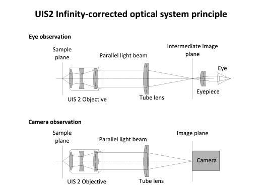 Infinity-Corrected Optics