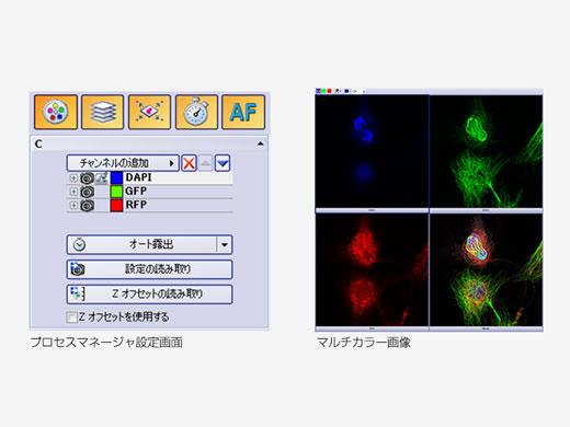 プロセスマネージャによる多次元画像の取得