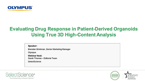 Evaluating Drug Response in Patient-Derived Organoids Using True 3D High-Content Analysis