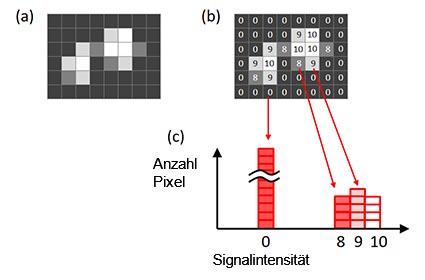 Abbildung 6: Ein Histogramm eines Bilds. Ursprüngliches Bild (a), Signalintensität jedes gezeigten Pixels im Originalbild (b), ein anhand des ursprünglichen Bildes erstelltes Histogramm (c).
