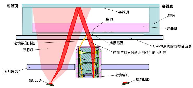 图5.落射斜式照明的配置(侧视图)