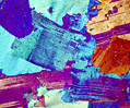 Granitoid Gneiss