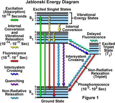 Jablonski Energy Diagram Java Tutorial