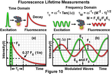 Fluorescence Resonance Energy Transfer (FRET) Microscopy