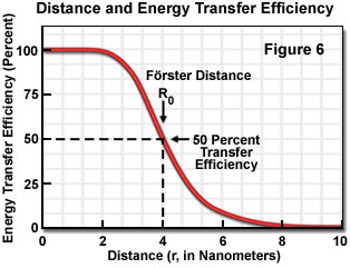 Fluorescence resonance energy transfer fret microscopy the practical significance of knowing the critical frster distance is that the value provides a guide to the range of separation distances that can be ccuart Gallery