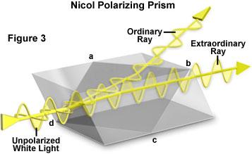 polarized light microscopy - microscope configuration   olympus life science