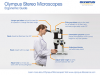 Olympus Stereo Microscopes: Ergonomic Guide