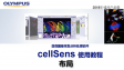 cellSens before using-layout