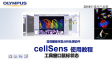 cellSens before using-synchronize image windows and exsplanation of mouse