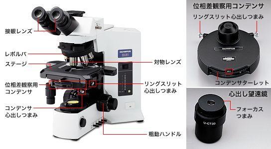 位相差顕微鏡の各部の名称