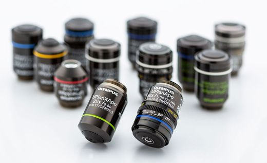 Olympus high-performance X Line objectives provide the brightness, resolution, and color accuracy that pathology requires thanks to a high numerical aperture (NA), improved image flatness, and a wide chromatic correction range.