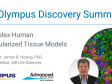 Complex Human Vascularized Tissue Models